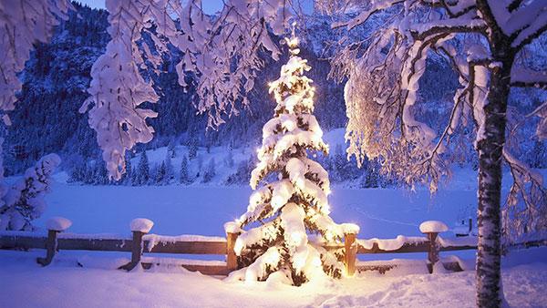 Immagini Natale Montagna.Natale In Montagna Dove Costa Meno Con Le Offerte Online